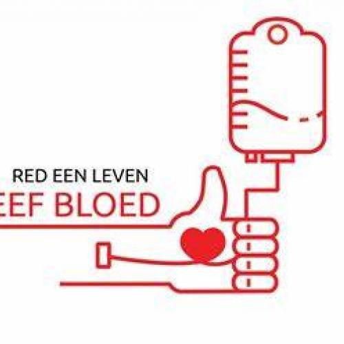 bloedgeven © rode kruis